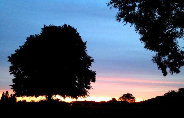 Stunning sunset over Chiswick...